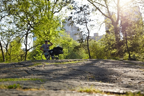 Im Central Park konnte ich einige Felsen entdecken - Foto: Anna Spindelndreier